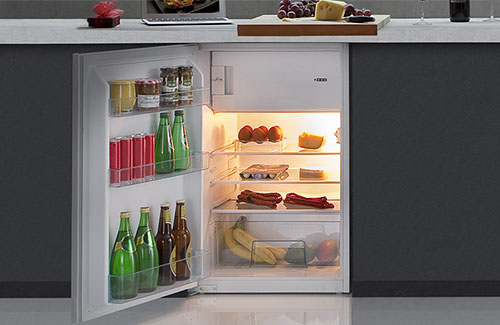 Freestanding Fridges